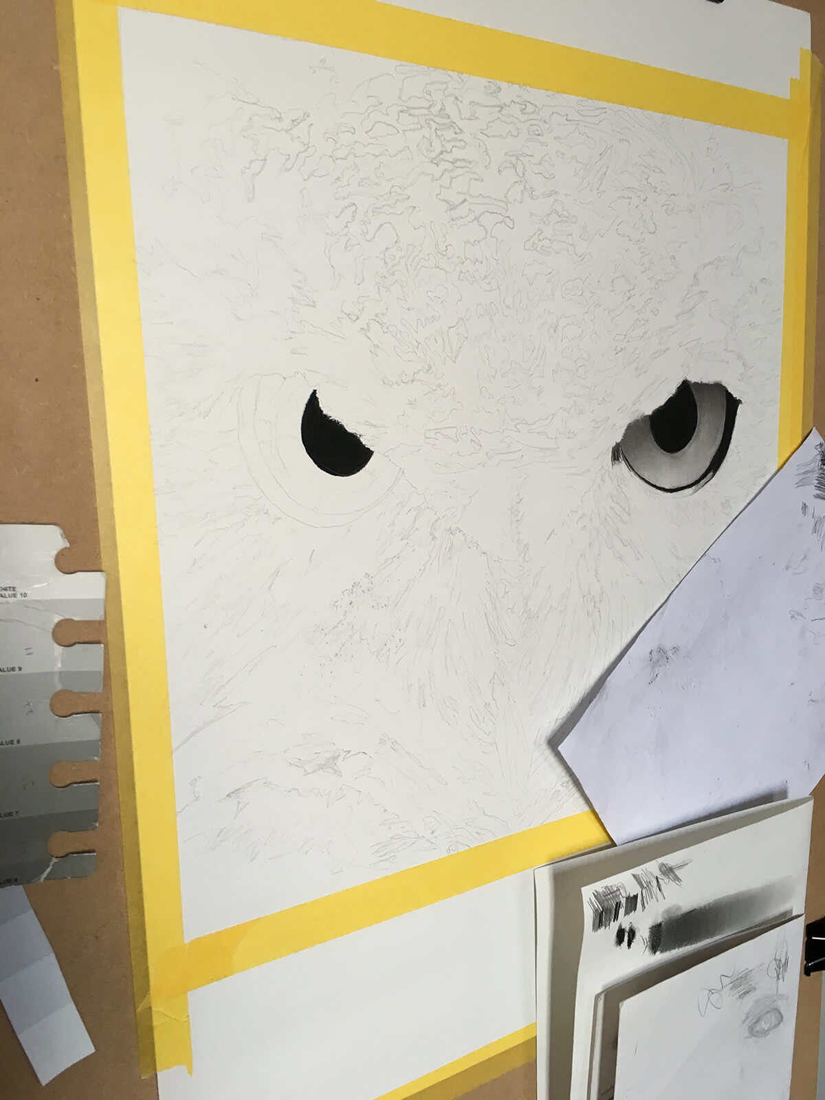 OWL_WIP_1-pencil-drawing