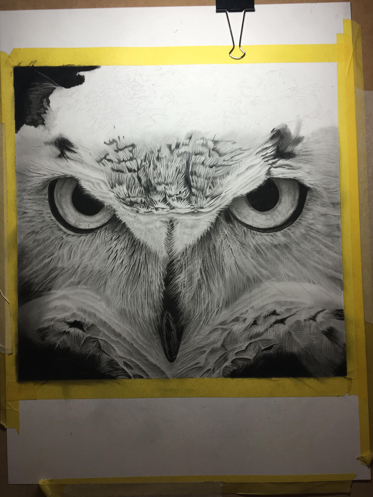 OWL_WIP_12-pencil-drawing