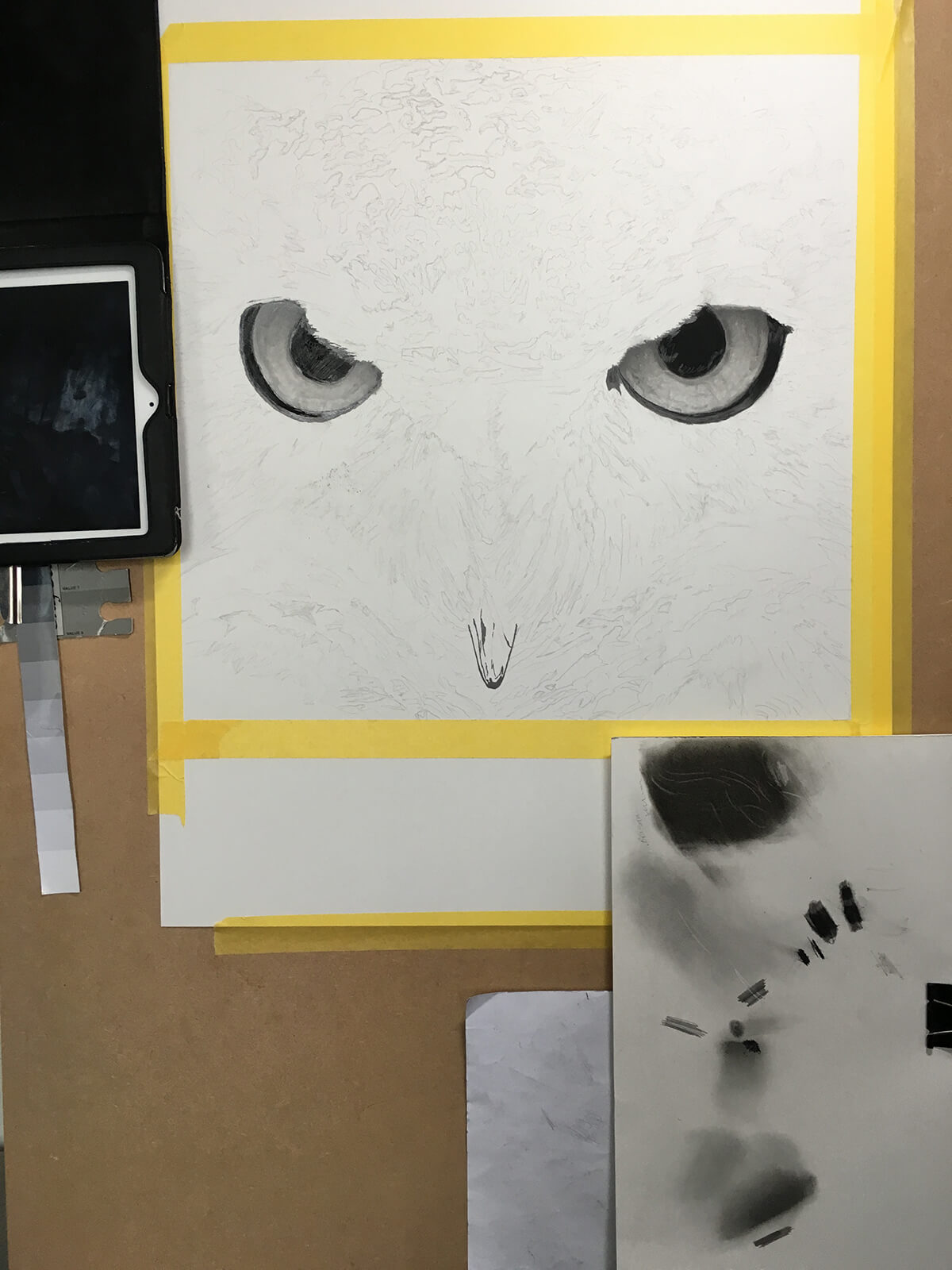 OWL_WIP_2-pencil-drawing