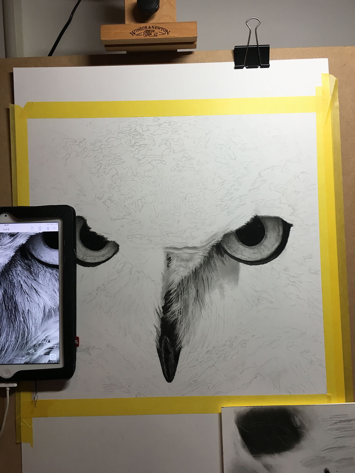 OWL_WIP_3-pencil-drawing