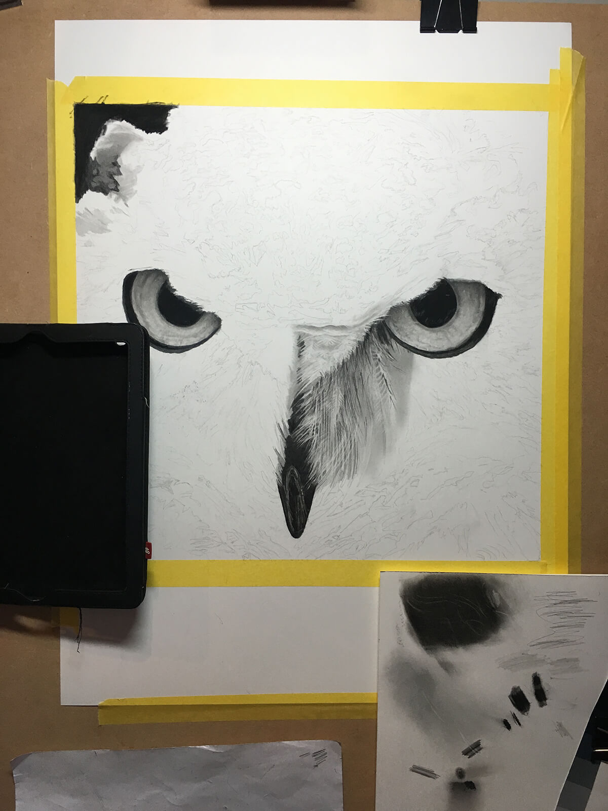 OWL_WIP_4-pencil-drawing