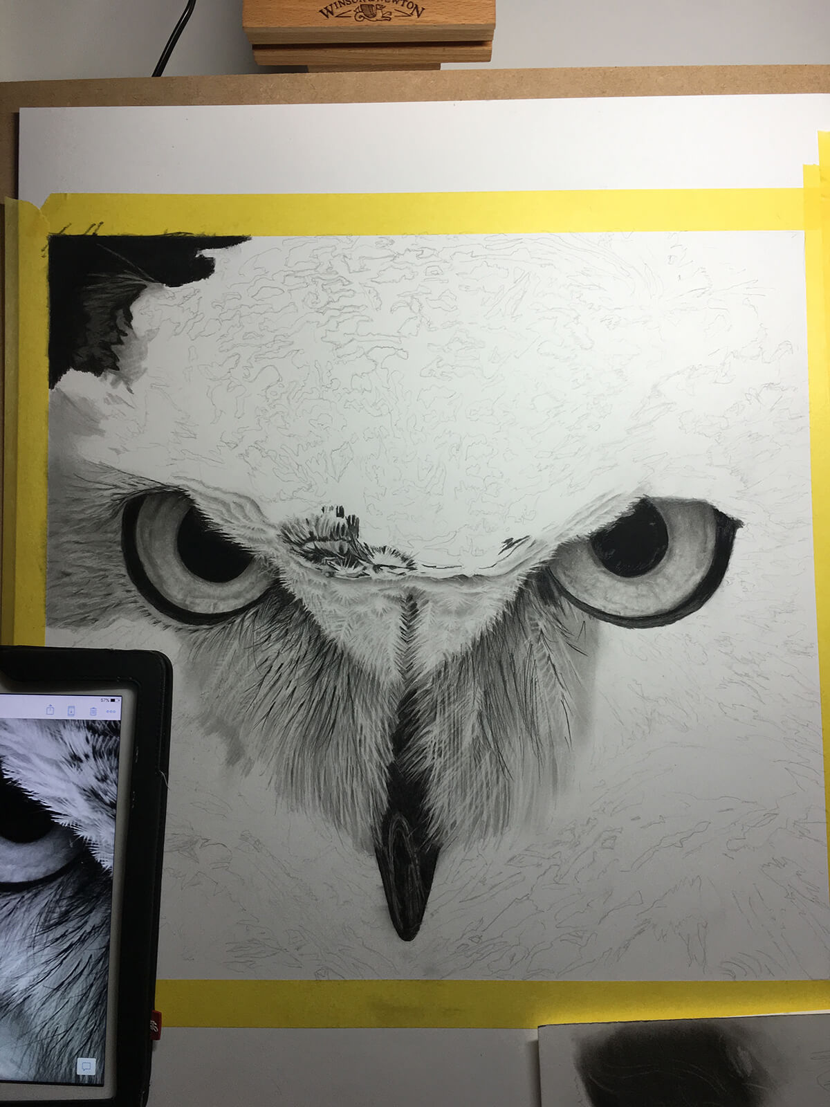 OWL_WIP_8-pencil-drawing