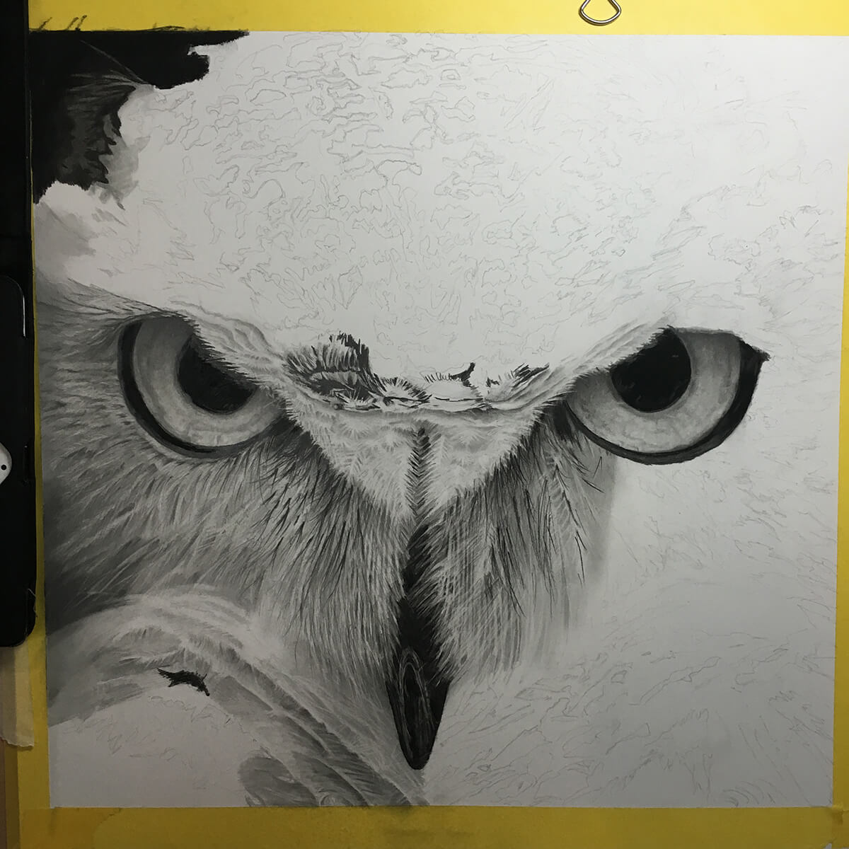 OWL_WIP_9-pencil-drawing