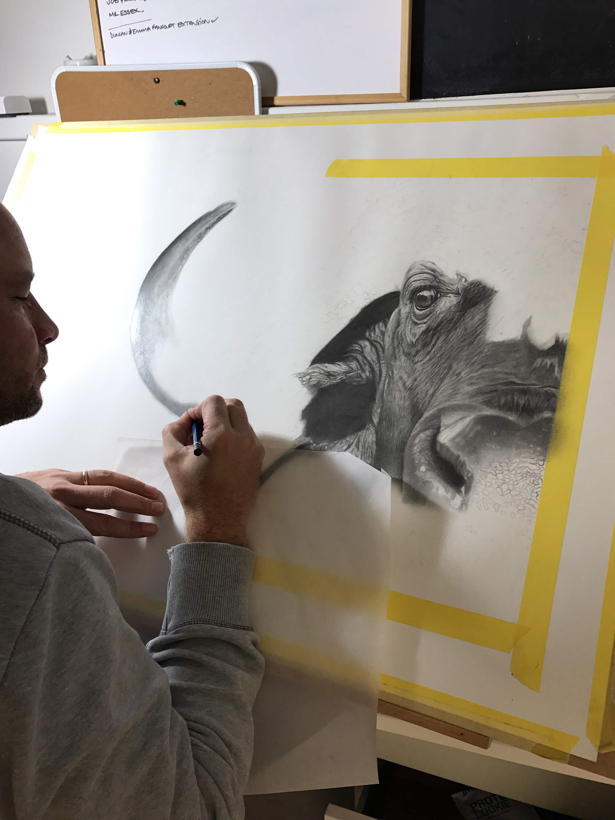 Si Knight drawing a buffalo