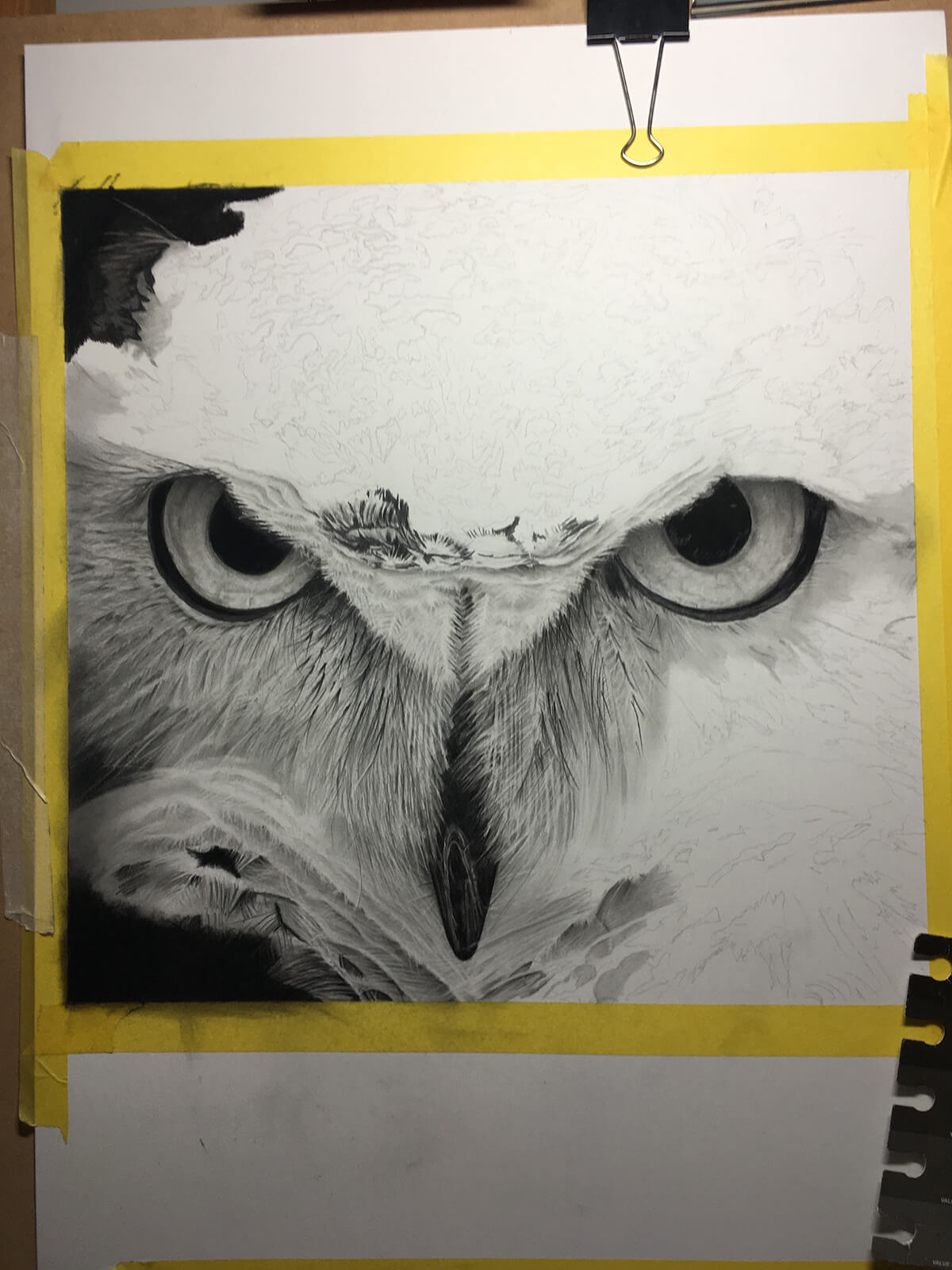 OWL_WIP_10-pencil-drawing