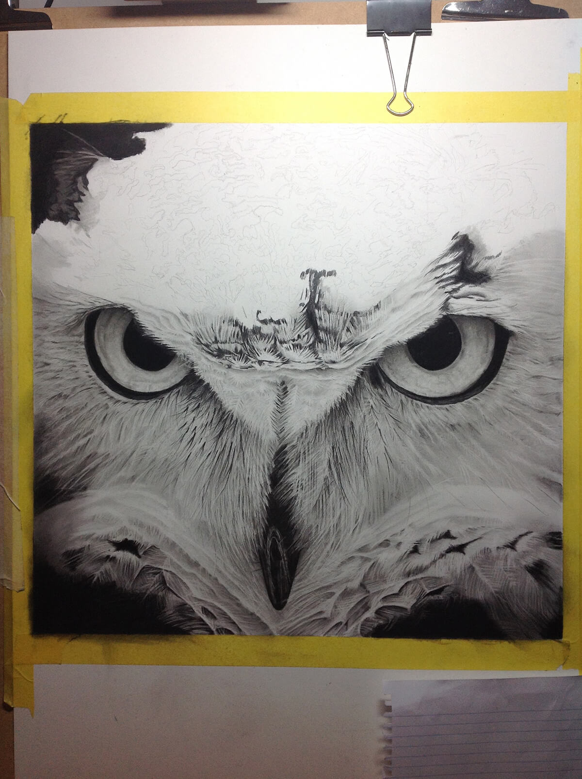 OWL_WIP_11-pencil-drawing