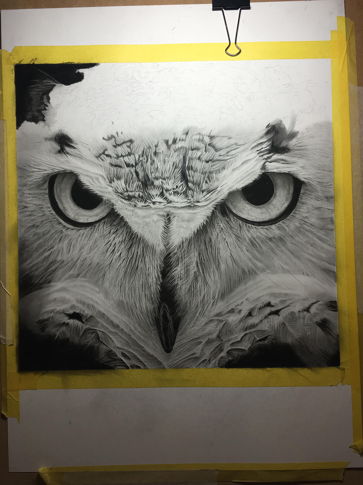 OWL_WIP_13-pencil-drawing