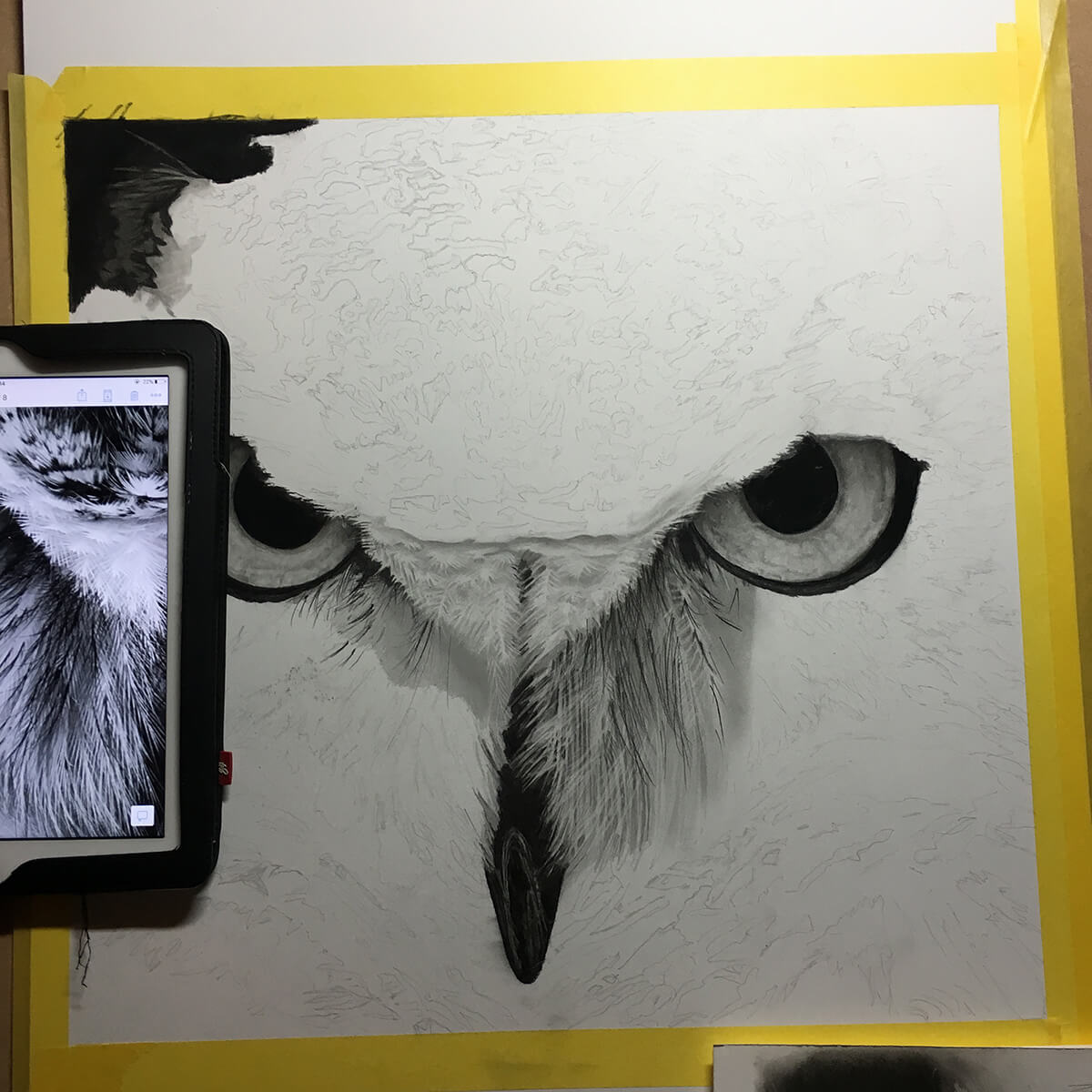 OWL_WIP_5-pencil-drawing