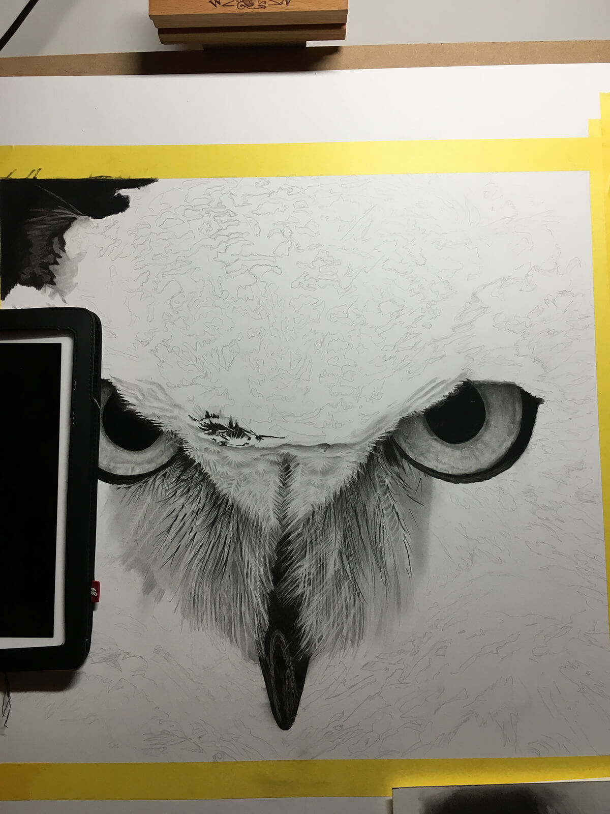 OWL_WIP_6-pencil-drawing