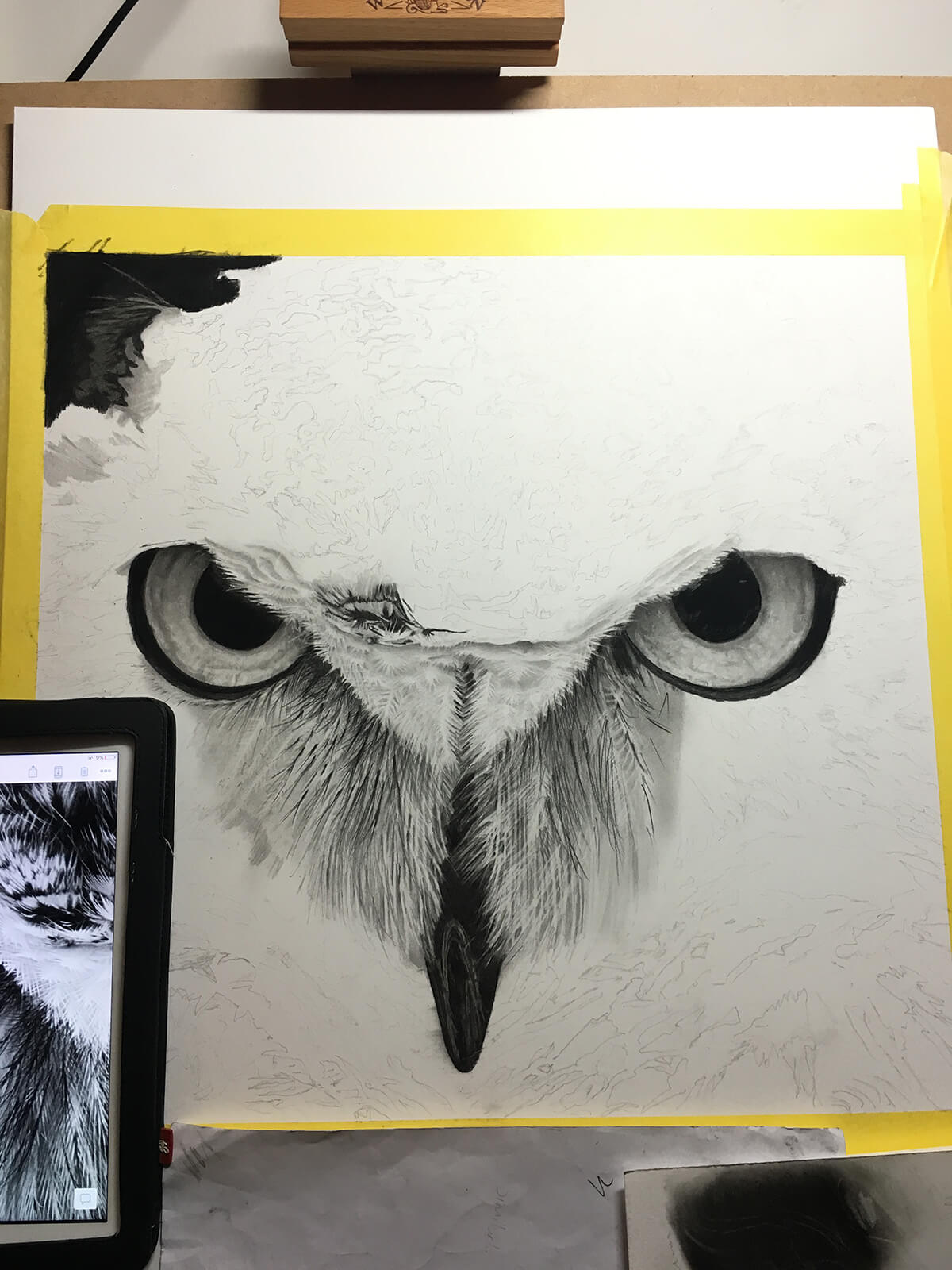 OWL_WIP_7-pencil-drawing
