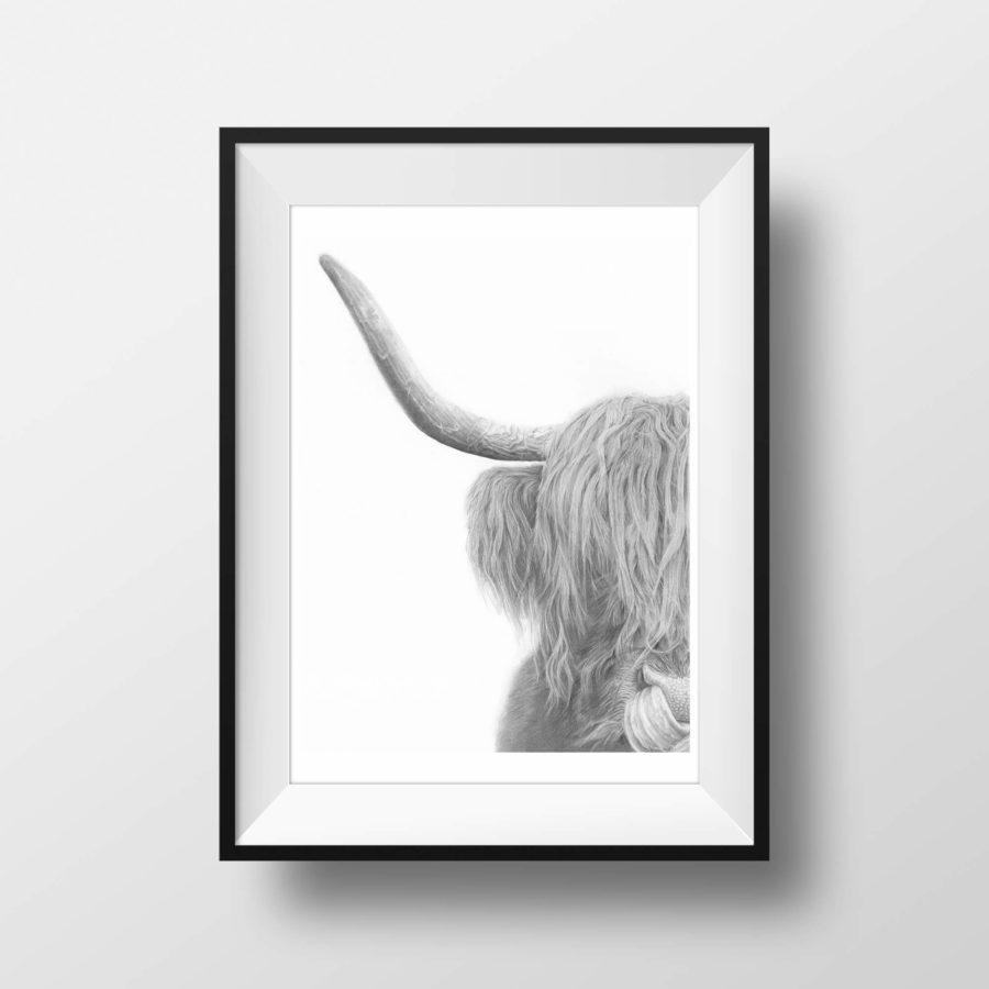 highlander-framed
